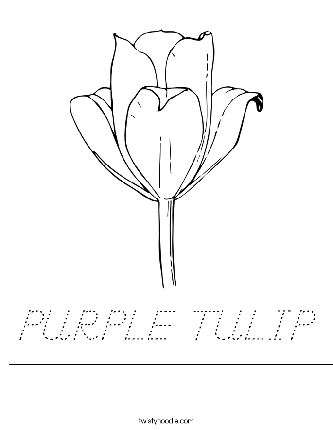 PURPLE TULIP Worksheet