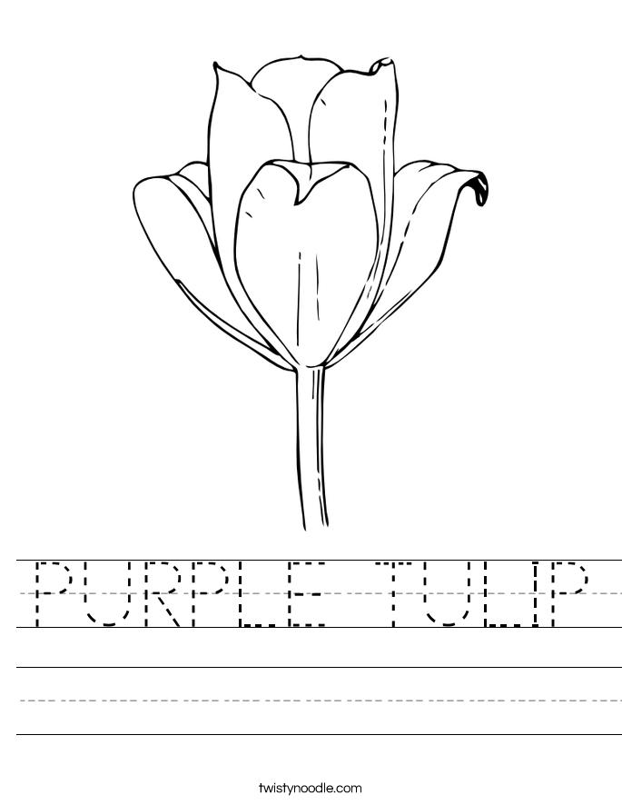 PURPLE TULIP Worksheet