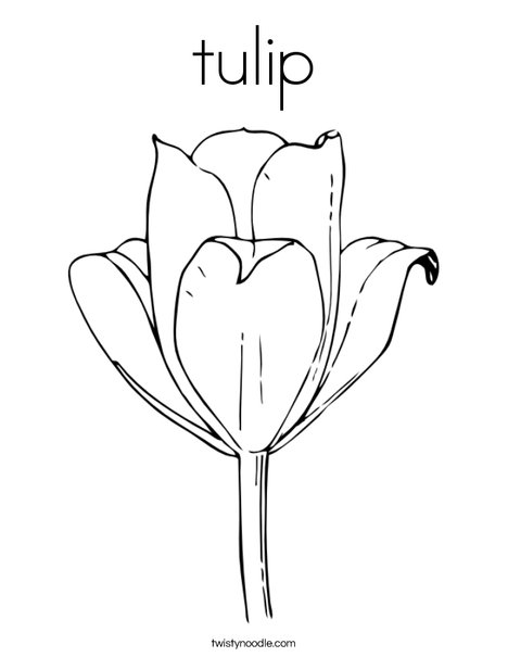 tulip coloring page twisty noodle