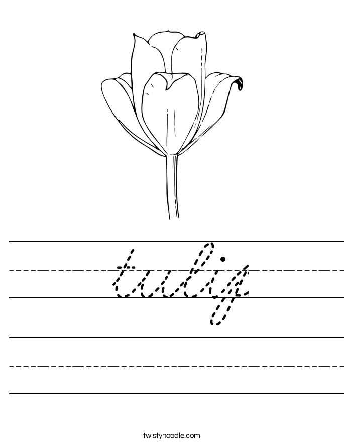 tulip Worksheet