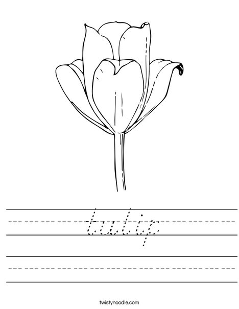Tulip Worksheet