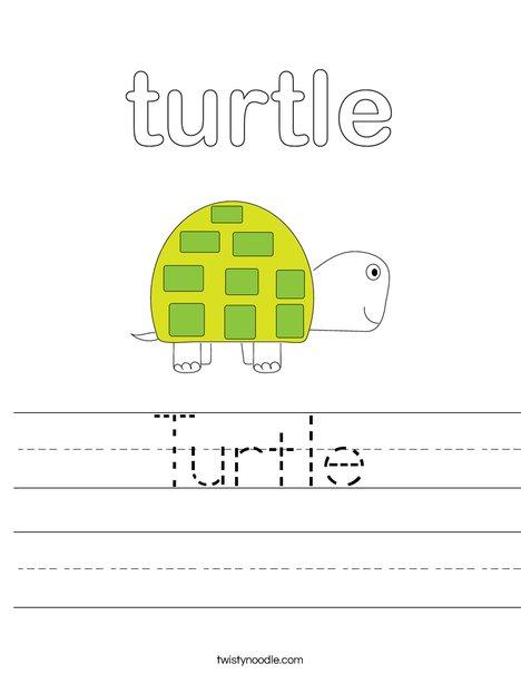 Turtle Worksheet