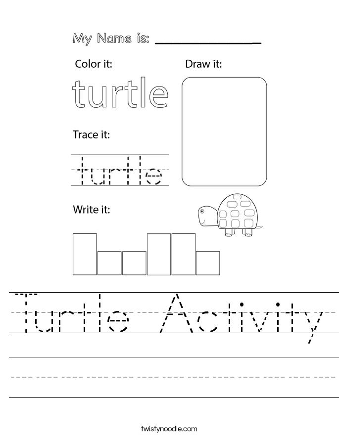 Turtle Activity Worksheet