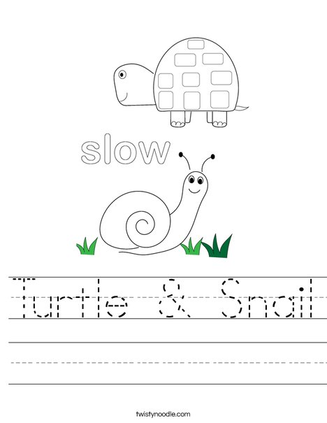 Turtle and Snail Worksheet