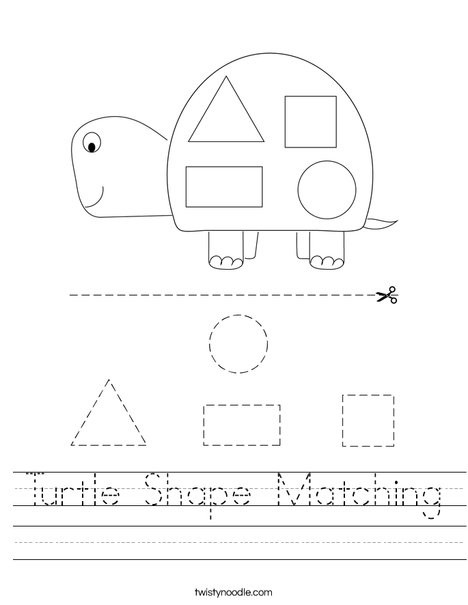 Turtle Shape Matching Worksheet