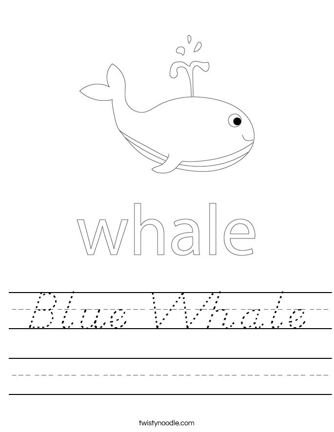 Blue Whale Worksheet
